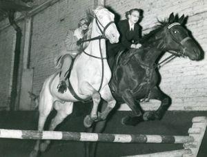 Square horses