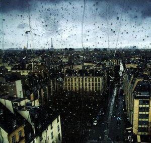 Paris in the rain cropped