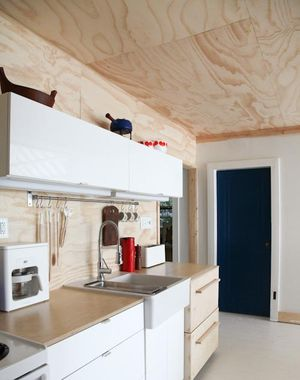 Plywood kitchen cropped