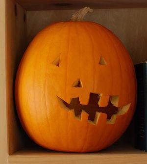 Mabel-2015-Oct-pumpkin-3