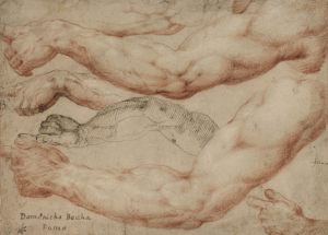 Beccafumi-Domenico-Five-studies-of-arms-and-hands-c1550-drawing-Royal-Collection