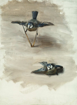 Sargent-John-Singer-Studies-of-a-dead-bird-1878-canvas-Met