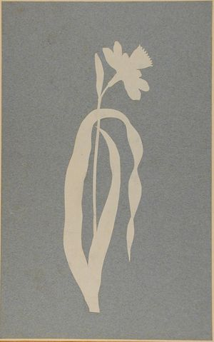 Runge-Philipp-Otto-daffodil-découpage-silhouette-c1795-1810-Ash