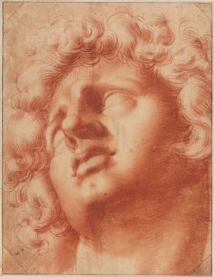 Roncalli-Cristofano-Head-of-Dying-Alexander-c1590-1620-drawing-Teylers-Museum-Haarlem-A