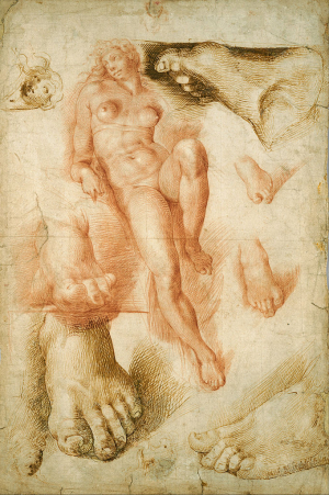 Passerotti-Bartolomeo-Study-of-Michelangelo's-Dawn-from-Medici-Tomb-1550-drawing-Nelson-Atkins-Museum-of-Art-Kansas-City
