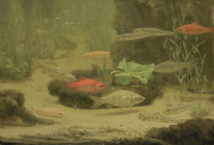 Dijsselhof-Gerrit-Willem-Gold-and-Silver-Fish-in-an-Aquarium-c1890-1922-oil-on-canvas-Rijksmuseum