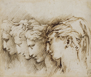 Parmigianino-Heads-of-four-women-in-profile-before-1540-drawing-Royal-Collection-